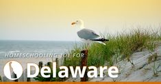 Delaware Homeschool Laws | HSLDA