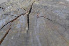 a close up of a cracked wood