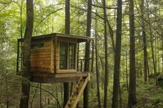 Flying Squirrle Tree House North Face