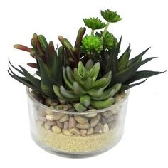 Artificial Succulent in Glass/Rock - Large - Threshold™