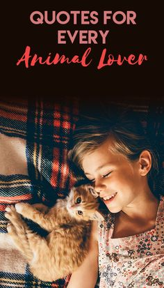 If you're on the hunt for a new pet or want to introduce your child to the concept of pet adoption or animal rescue, here are nine sweet picture books to read together. Turkish Angora Cat, Angora Cats, Burmilla Cat, Animals Beautiful, Cute Animals, Animal Fun, Beautiful Cats, Animal Lover Quotes, American Bobtail Cat