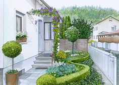 Clever use of a low, curved boxwood hedge in a narrow side yard to add interest and planting bays.