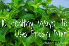 Is your mint plant exploding to the point that you feel guilty for not using it? Yeah, me too. The great thing about mint is that it smells heavenly and it's so easy to grow. (Quick tip: always give it it's own container or it will choke out your garden.) The not-so-great thing about mint...