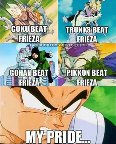 Akira Toriyama...you're so mean to Vegeta, your best creation