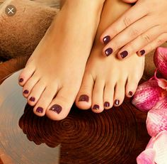 closeup photo of a female feet at spa salon on pedicure procedure female legs in water decoration the flowers stock photo from the largest library of
