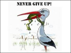 Retired teacher Lou Ellen Brown says the teacher's motto is: Never Give Up. Positive Quotes, Motivational Quotes, Funny Quotes, Funny Memes, Inspirational Quotes, Funny Ads, Motivational Pictures, Wisdom Quotes, Love Quotes