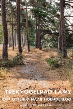 Day Trip, Wonderful Places, Places To See, Netherlands, Paths, The Good Place, Trail, Hiking