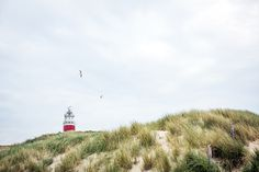 Lighthouse on the island of Texel, the Netherlands