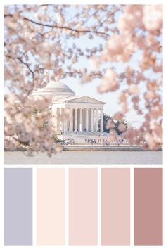 DC Blossoms Gallery Wall Collage (Set of 2 Photo Prints), Wall Art, Home Decor Color Schemes Colour Palettes, Colour Pallette, Color Palate, Color Combos, Spring Color Palette, Lavender Color Scheme, Pastel Palette, Spring Colors, Collage Mural