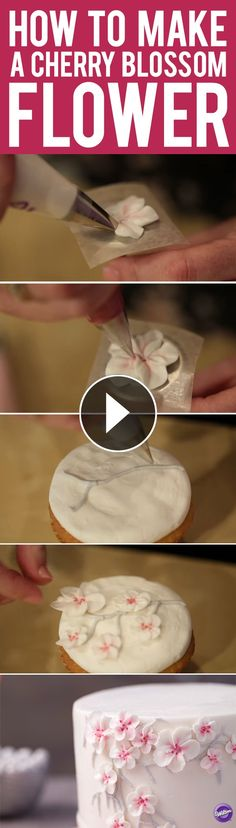 Learn how to make a buttercream cherry blossom flower that would add beauty to any cake or cupcake! You will need petal tips 101, 102, and 103 to create this pretty flower. Click to watch the step-by-step video tutorial.