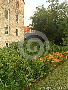 Photo about A sustainable way of managing Stormwater while increasing biodiversity. Image of sustainable, raingarden, managing - 74341519 Permaculture, Sustainability, Stock Photos, Image, Sustainable Development