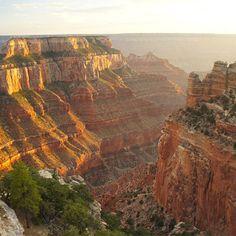 grand canyon road trip