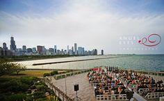 Shedd Aquarium Chicago wedding.