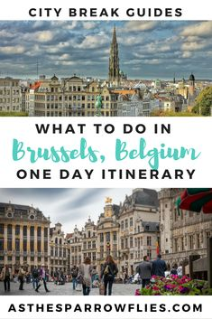 Brussels in One Day | Things to do in Brussels | Brussels Day Trip | Travel Tips | European Holidays #brussels #europe #traveltips
