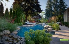 Total Backyard Design Projects - Betz PoolsThis well-travelled Toronto family transformed their backyard into an eclectic oasis highlighted by oriental influences. The focal point is a shallow 5' plunge pool surrounded by lush plantings and several hand-selected granite boulders to enhance the natural look.
