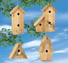 All Bird Project Plans & Patterns - Cedar Birdhouses Wood Project Plan Wood Projects For Beginners, Wood Working For Beginners, Diy Wood Projects, Wood Crafts, Diy Crafts, Woodworking Projects That Sell, Woodworking Furniture, Woodworking Plans, Woodworking Shop