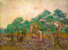 Olive Picking by Vincent Van Gogh Handmade oil painting reproduction on canvas for sale,We can offer Framed art,Wall Art,Gallery Wrap and Stretched Canvas,Choose from multiple sizes and frames at discount price. Vincent Van Gogh, Art Van, Oil Canvas, Canvas Art, Canvas Paintings, National Gallery Of Art, Art Gallery, Van Gogh Paintings, Dutch Painters