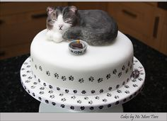 Sculpted cat cake with edible cat topper | Flickr - Photo Sharing!