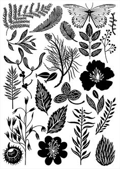 Dawn Cooper, illustrator represented by The Artworks Illustration Agency in London. Pattern Illustration, Botanical Illustration, Digital Illustration, Linocut Prints, Giclee Print, Art Graphique, Montage, Pattern Art, Fine Art Paper