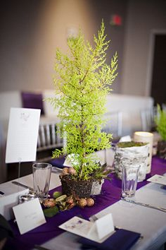 Textured purple and green tablescape.