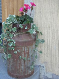 tonkka Garden Ideas, Vase, Plants, Home Decor, Homemade Home Decor, Flower Vases, Flora, Landscaping Ideas, Plant