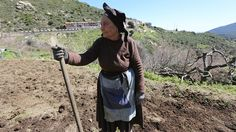 Live to 100: What we can learn from the people of Sardinia