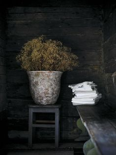 Dried plants and towels in a dark room.