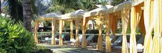 Bumble and Bumble tents