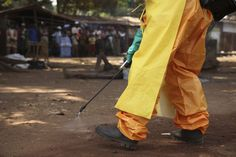 Ebola Survivor's Antibodies Stop All Strains of the Virus, Study Finds