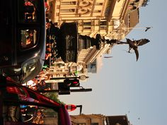 London picadilly circus...still can't believe Brian took me here