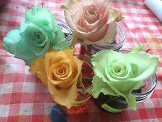 Projekt...Blumen trinken...Wasser mit Ostereierfarbe färben und den Blumen zu trinken geben...