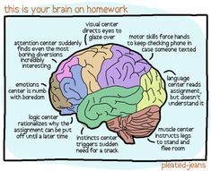 Your #brain on homework #infographic