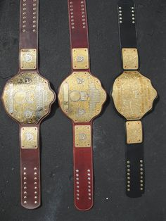 Different versions of the Big Ole Gold Belt World Championship Wrestling, Wwe Accessories, Harley Race, Philadelphia Eagles Super Bowl, Wwe Belts, Gold Boots, Ric Flair, John Cena, Lucha Libre