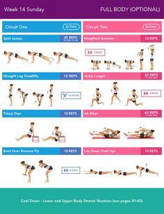 Week 14 Sunday Bikini Body Guide 2.0 by Kayla Itsines, weeks 13-24 (complete)
