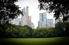 Sheep Meadow, Central Park South