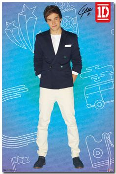 One Direction- Liam - Pop Poster I don't have this yet, but I have the Niall one. I think I might have the Harry one too. The reason I put it on this board is because I'm going to try and get it soon I hope Michael's or FYE still has them. Do they still have it?