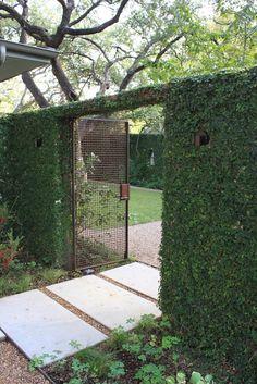 Open Days Austin Garden Tour: Christine Ten Eyck and Gary Deaver Garden Yard Design, Fence Design, Fence Landscaping, Unique Gardens, Garden Fencing, Dream Garden, Garden Inspiration, Outdoor Gardens, Landscape Design