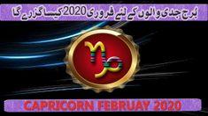 by m s Bakar Urdu Hindi Pisces Monthly Horoscope, Capricorn, Astrology, February, Capricorn Sign