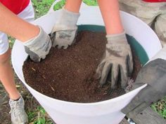 Easy DIY Potting Mix Recipe. Great info on exact mix, pH, and lots of good tips.