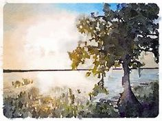 evening at blue cypress