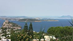 La nostra #Ischia e il suo emblema, il Castello Aragonese, #Vivara in compagnia di #Procida, Capo Miseno e la baia di Pozzuoli, il Vesuvio, Napoli... e oltre...  Thanks to @Christian Buono