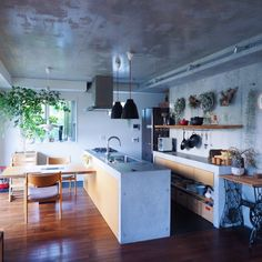 コンクリート打ちっ放し/コンクリートキッチン/観葉植物/キセログラフィカ/キッチン…などのインテリア実例 - 2015-10-17 22:01:43 | RoomClip(ルームクリップ)