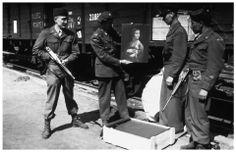 """""""The monuments man"""" Karol Estreicher z Polski - na zdjęciu przygotowania do przekazania """"Damy z gronostajem"""" Leonarda da Vinci/ fot. dzięki: Lynn Nicholas"""