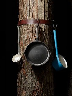 Camping storage: An old leather belt around a tree, with S-hooks to hang utensils, clothing, etc.