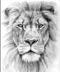 I'm getting a lion forsure soon!
