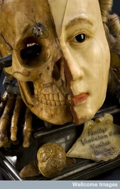 Wax model of a female head depicting life and death, Europea