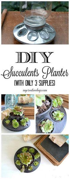 Succulents Planter http://mycreativedays.porch.com/diy-succulents-planter/