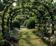 Archway makes green tunnel