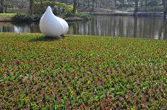 Keukenhof, na Holanda, Lisse - O parque sem flores