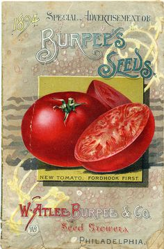 Seed Catalogs from Smithsonian Institution Libraries - Burpee's Seeds 1894 Front Cover